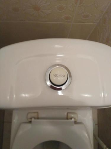 Ремонт унитаза IDO, с круглой кнопкой.